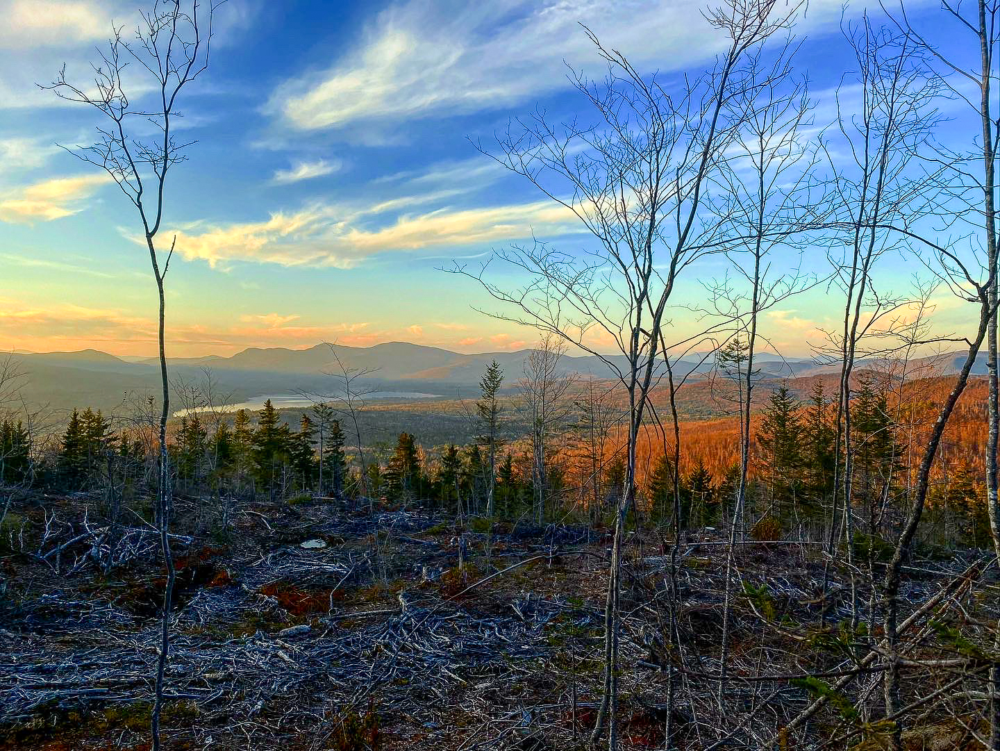 Large Maine Land Lot For Sale