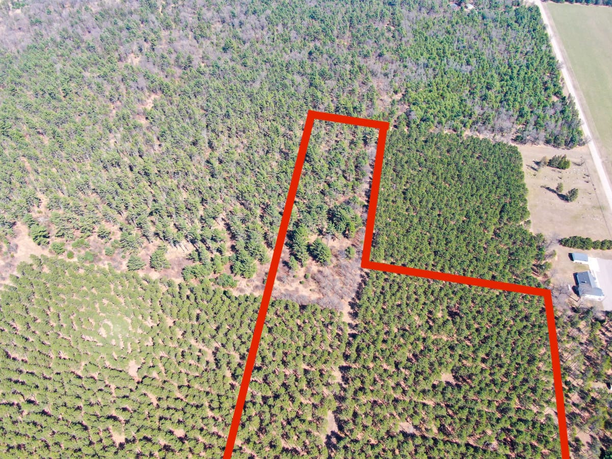 Town of Big Flats 21.924 acre timber lot for sale in Adams County WI.