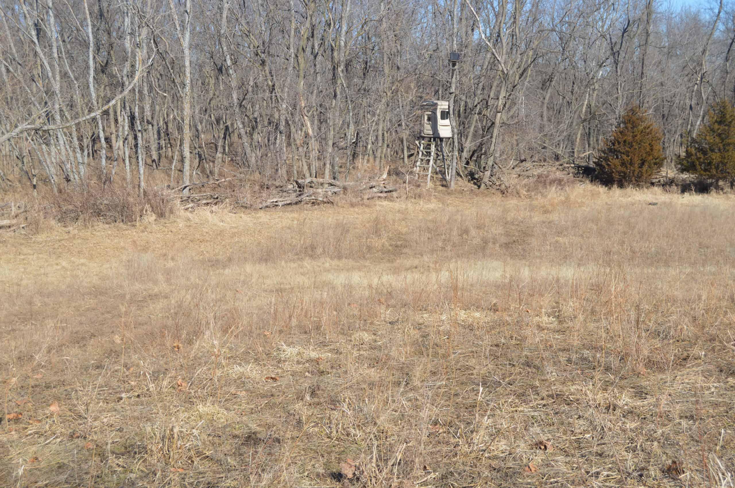 80 Acres High Fenced / Development Land