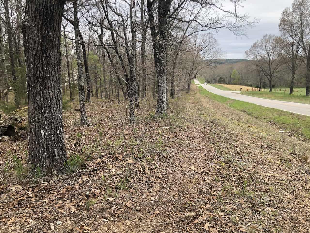 Land for Sale in Southern Missouri Ozarks