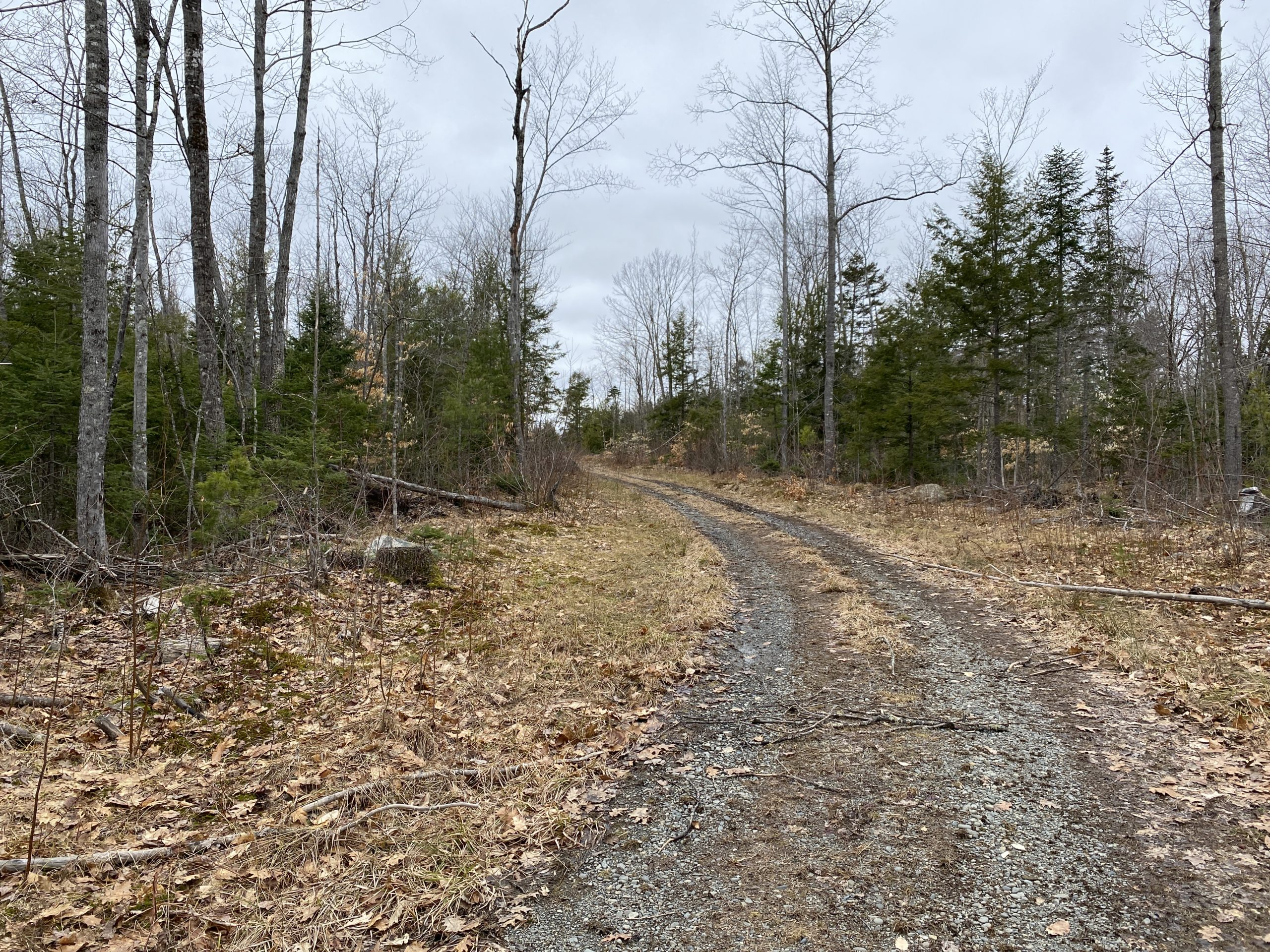 Affordable Maine Land For Sale