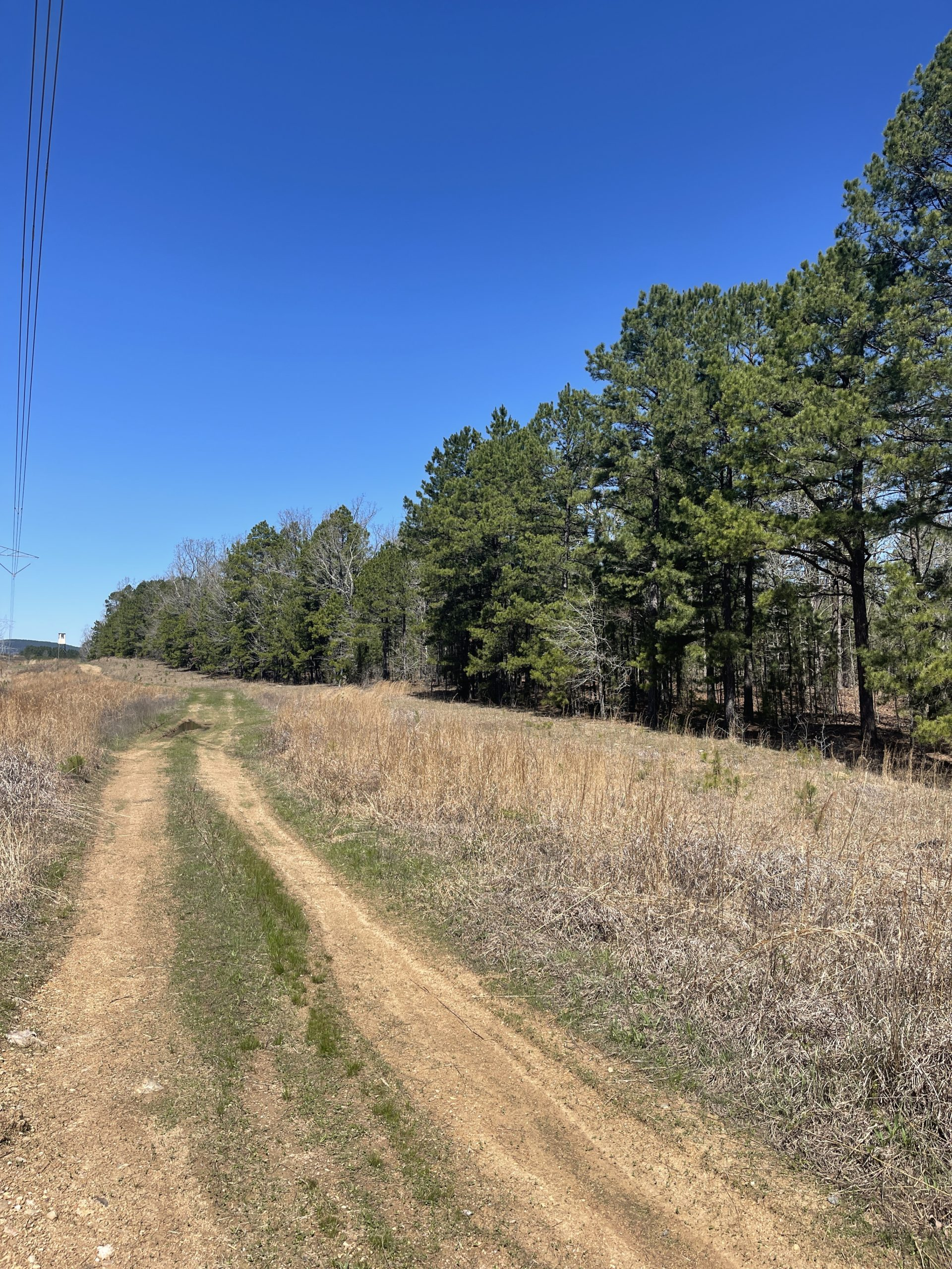 Land for Sale in Pulaski County, AR near Lake Maumelle and Little Rock.