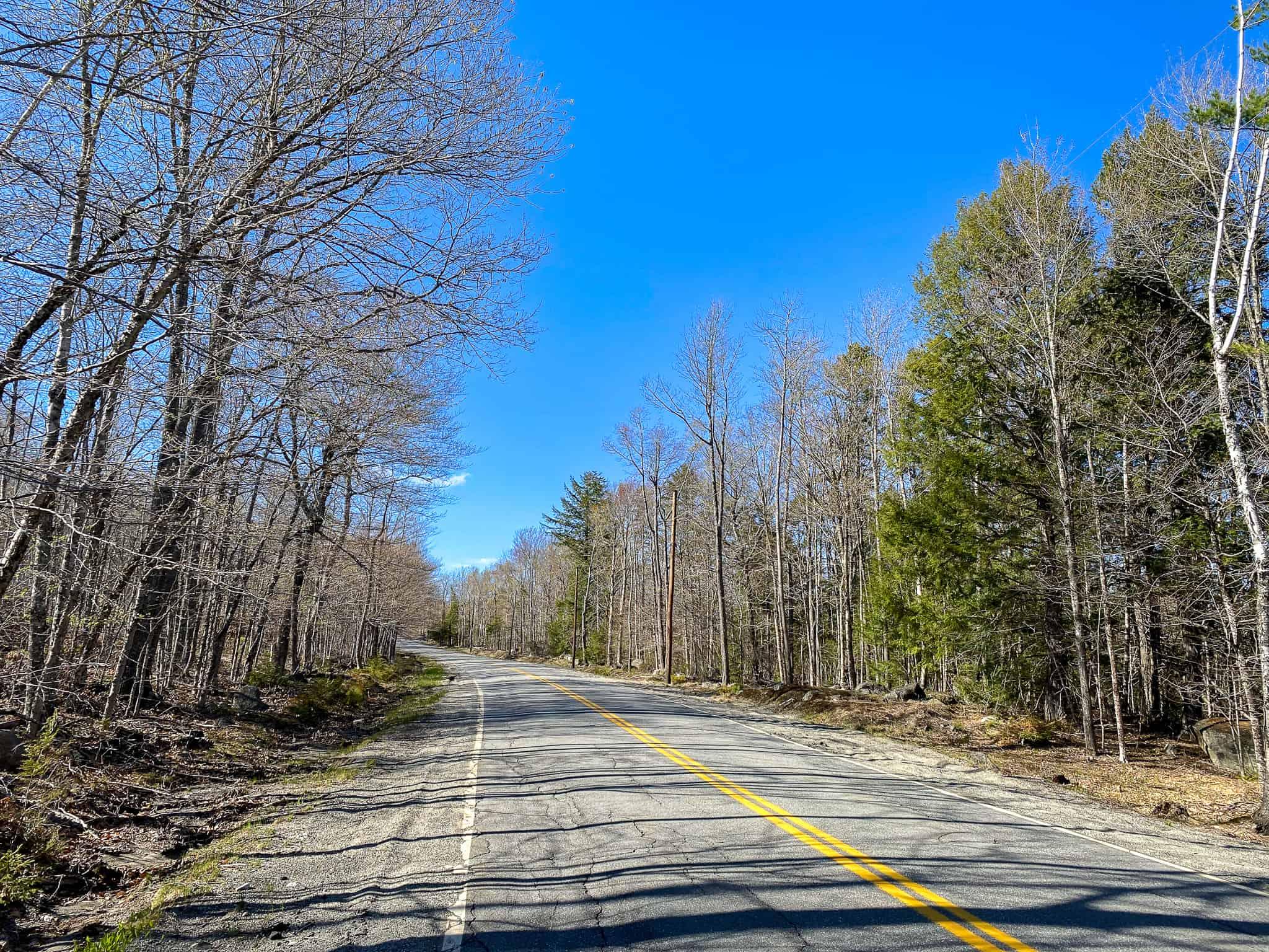 22± Acres of Land in Otis, Maine