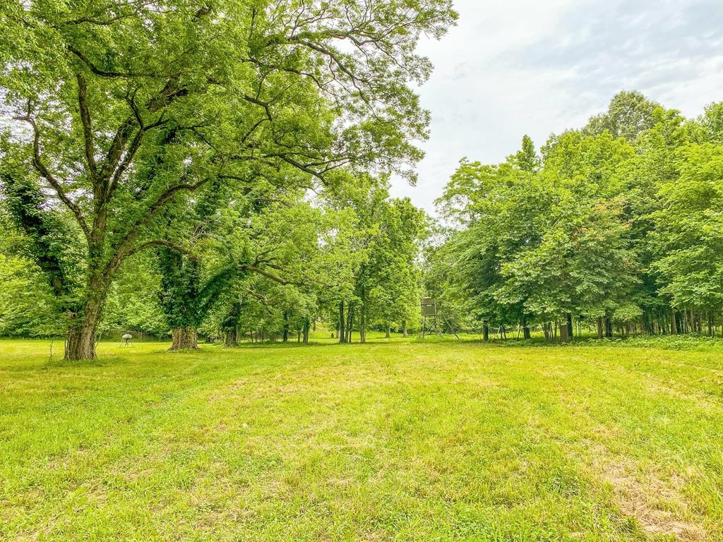 641 Acres Hunting Land for Sale just North of Natchez, MS