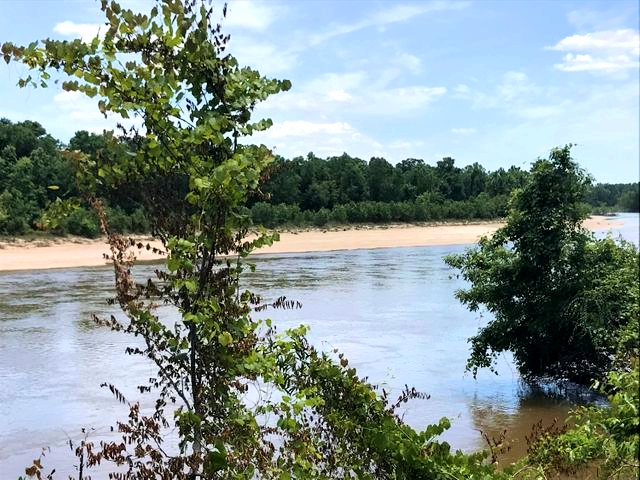 510 Acres Leaf Riverfront Hunting Timberland for Sale MS