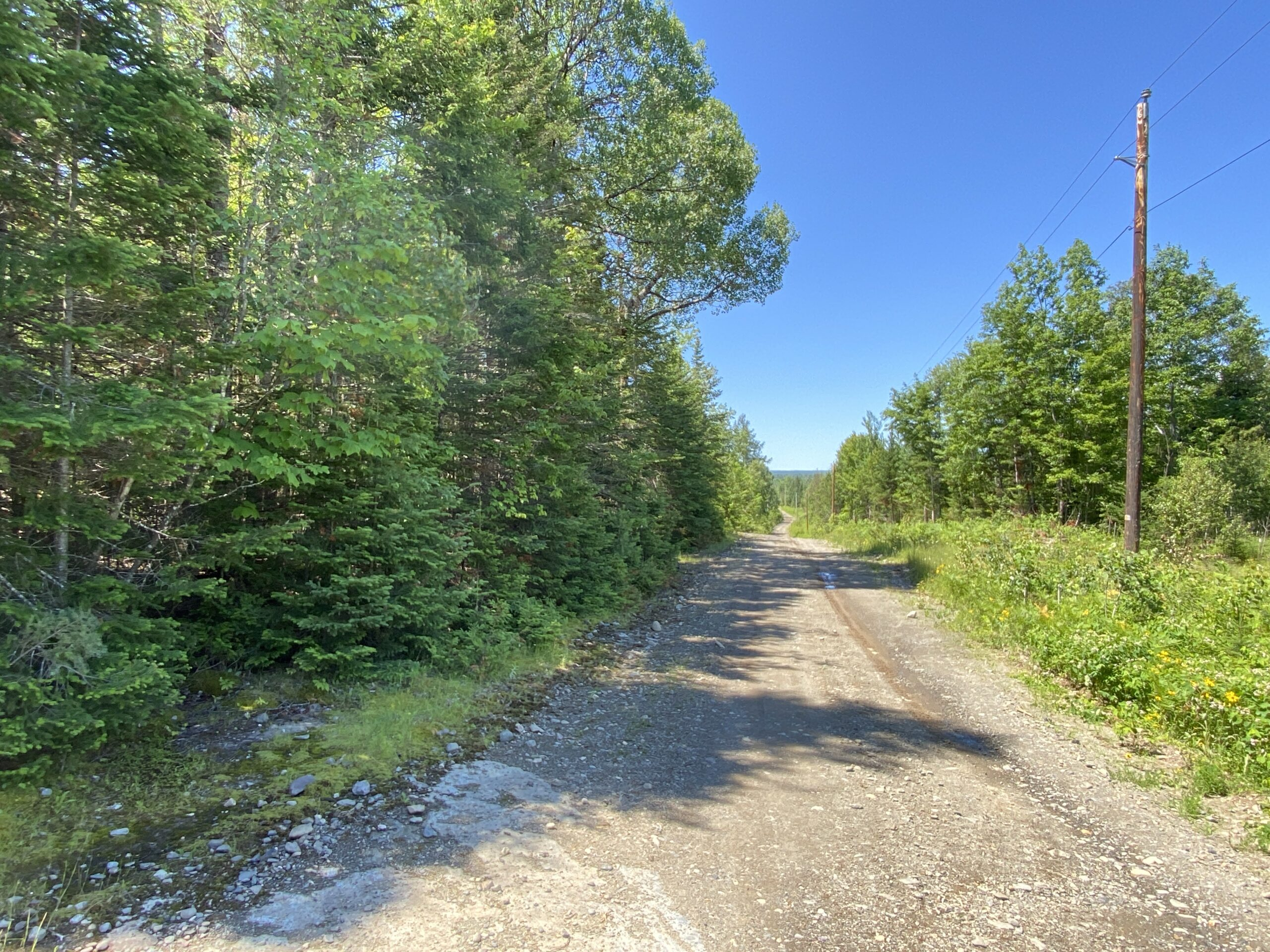 Maine Rural land for sale