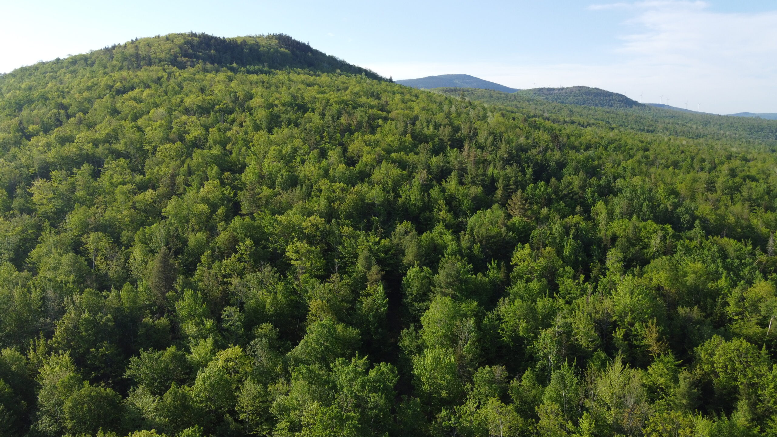Land for sale in Carthage, Maine