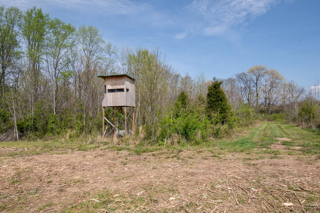Acreage for Sale, Hunting Land for Sale, Reacreational Property for Sale, Tennessee, Maury County, Columbia, Jake Grizzard, Realtor (1)